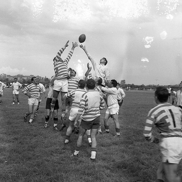 Internationnaux de rugby