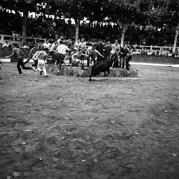 Fêtes patronales Nogaro Interville/ enciero : Photographies prises à Nogaro