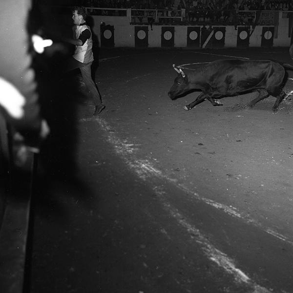 Intervilles Nogaro/ Cazaubon : Photographies prises à Nogaro.